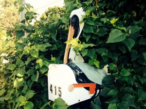 You've got mail... and er, a heron!